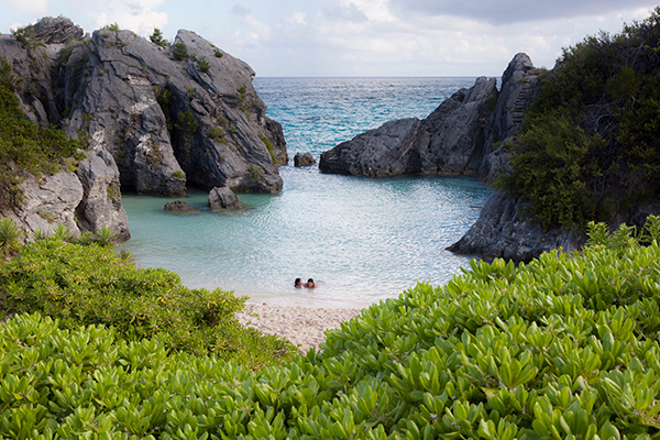 Where can Americans travel fly now Bermuda Sherpa
